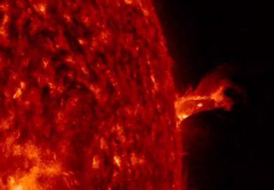 Протуберанец больше Земли выплюнуло Солнце